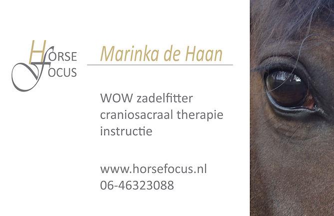 HorseFocus